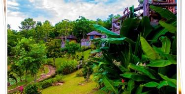 หมอกฟ้าใส รีสอร์ท ที่พักท่ามกลางขุนเขา และธรรมชาติที่สวยงาม