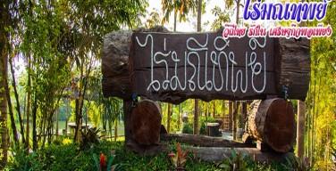 ไร่มณีทิพย์ ที่พักพร้อมแหล่งเรียนรู้วิถีไทย ใส่ใจเศรษฐกิจพอเพียง