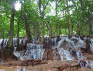 นายอำเภอพบพระชวนนักปั่นชมธรรมชาติ น้ำตกป่าหวาย-คืนกล้วยไม้สู่ธรรมชาติ